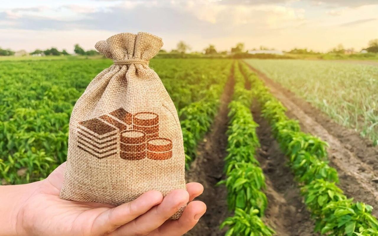 Como o agronegócio influencia na economia nacional?